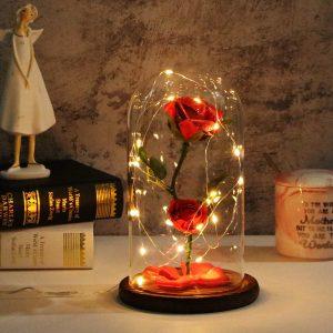 Rosa en cúpula de cristal iluminada