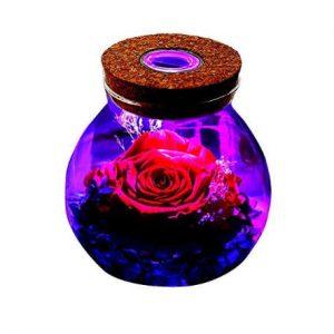 rosa natural conservada